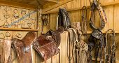 stock photo of saddle-horse  - Horse saddles and other horse gear hanging on a shed wall - JPG