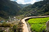 image of luzon  - beautiful mountains with rice plantations in the mountains of the Philippine Islands - JPG