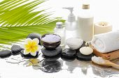 picture of salt-bowl  - spa concept with palm  - JPG
