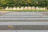stock photo of cross  - Zebra walkway crossing safety in school for cross to football field - JPG