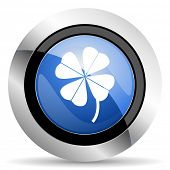 picture of four leaf clover  - four-leaf clover icon  original modern design for web and mobile app on white background  - JPG
