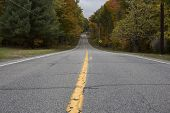 picture of tree lined street  - Empty asphalt road with yellow line in Autumn - JPG