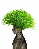 foto of ecology  - eco - JPG
