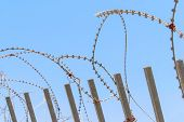 image of barbed wire fence  - Security with a barbed wire fence with blue sky - JPG