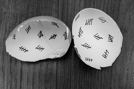 stock photo of cross-hatch  - Egg shells shown lying on a wooden background with marks inside counting down the days till hatching - JPG