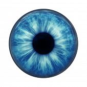 An image of a blue eye ball glass