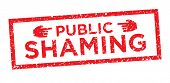 Online Or Public Shaming Graphic poster