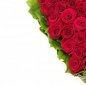 stock photo of red rose flower  - heart of roses - JPG