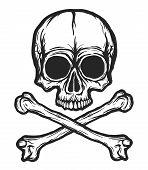 Human Skull With Bones Vector Silhouette Isolated On White. Hand Drawn Black And White Skull Illustr poster