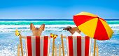 Dog Resting And Relaxing On A Hammock Or Beach Chair Under Umbrella At The Beach Ocean Shore, On Sum poster