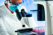 Stem Cell Researcher Working In Laboratory, Blue Background poster