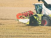 Wheat Harvesting With Combine Harvester poster