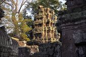 Ancient Ruins Of Ta Prohm Temple In Angkor Wat Complex, Cambodia. Angkor Wat Temple Tower In Sunset  poster