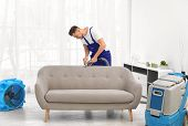 Dry Cleaning Worker Removing Dirt From Sofa Indoors poster