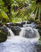 picture of punchbowl  - waterfall in a small man made tropical stream with motion blur from long exposure - JPG