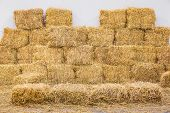 Rice Straw Bales