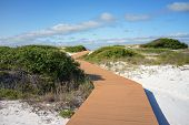 stock photo of gulf mexico  - Boardwalk at Pensacola Florida beach leads through sand dunes and scrub oaks to the Gulf of Mexico - JPG