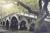 stock photo of whalehead club  - The footbridge in Corolla - JPG