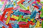 picture of thankful  - Thank You Word Cloud printed on colorful paper different languages - JPG