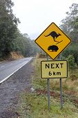 stock photo of wombat  - Kangaroo and Wombat Road sign in Snow country 2 - JPG
