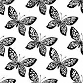 pic of flying-insect  - Black and white ornate seamless butterfly pattern of flying butterflies in square format for wallpaper and fabric design - JPG