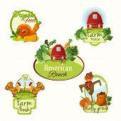 pic of food label  - Farm organic food house american ranch fresh locally grown labels colored set isolated vector illustration - JPG