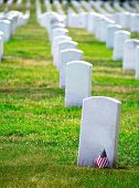 picture of arlington cemetery  - Arlington National Cemetery Virginia VA near Washington DC United States - JPG