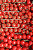stock photo of stall  - Many juicy tomatoes for sale in a market stall - JPG