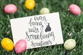 stock photo of easter eggs bunny  - every bunny needs some bunny sometimes against blank greeting card with easter eggs - JPG