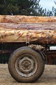 foto of logging truck  - Wooden Logs on a horse cart in countryside - JPG