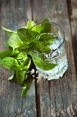 stock photo of mint-green  - Fizzy summer soda drink with mint - JPG