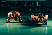 Women On Boxing Training Doing Push Ups poster