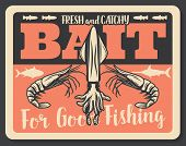 Fishing Baits Retro Poster Of Fish Catch. Vector Seafood Lobsters, Shrimp Prawns And Squid, Sea Tuna poster