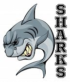 An Illustration Of A Cartoon Shark Sports Team Mascot With The Text Sharks poster