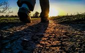 The Silhouette Of The Feet Of A Person Walking West Or East Towards The Sun Along A Dirt Road Across poster