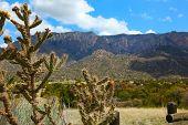 Beautiful Albuquerque landscape with the Sandia Mountains