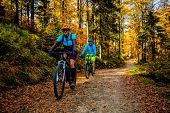 Mountain biking woman and man riding on bikes at sunset mountains forest landscape. Couple cycling M poster
