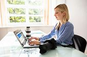 Female Editor Working On Laptop With Dslr Camera On Desk poster