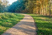 Apparently Endless Curved Path Covered With Fine Gravel In A Dutch Park. It Is Autumn And The Early  poster