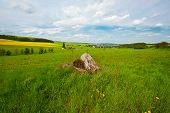 stock photo of afforestation  - The Woodpile on the Green Fields Germany - JPG