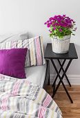 pic of pillowcase  - Purple flowers decorating a bright contemporary bedroom - JPG
