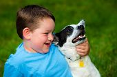 image of cattle dog  - Child lovingly embraces his pet dog outdoors