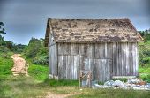 image of shacks  - Wood shack in the middle of a farm field in the Brazilian countryside  - JPG