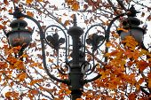 picture of light-pole  - Autumn shot with a vintage public lighting pole - JPG