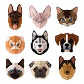 stock photo of puppy dog face  - Pets portrait flat icons set with cats dogs kittens and puppies isolated vector illustration - JPG