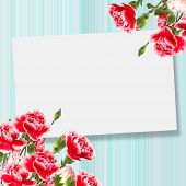 stock photo of carnations  - Abstract background for design - JPG