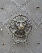 picture of lions-head  - Lion head door knocker close - JPG