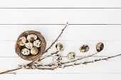 stock photo of willow  - Easter quail eggs in nest and willow branch on wooden background - JPG