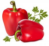 Photo-realistic vector illustration of red sweet pepper with drops of water.