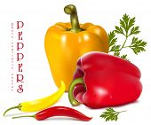 Photo-realistic vector illustration of  ripe colored peppers.